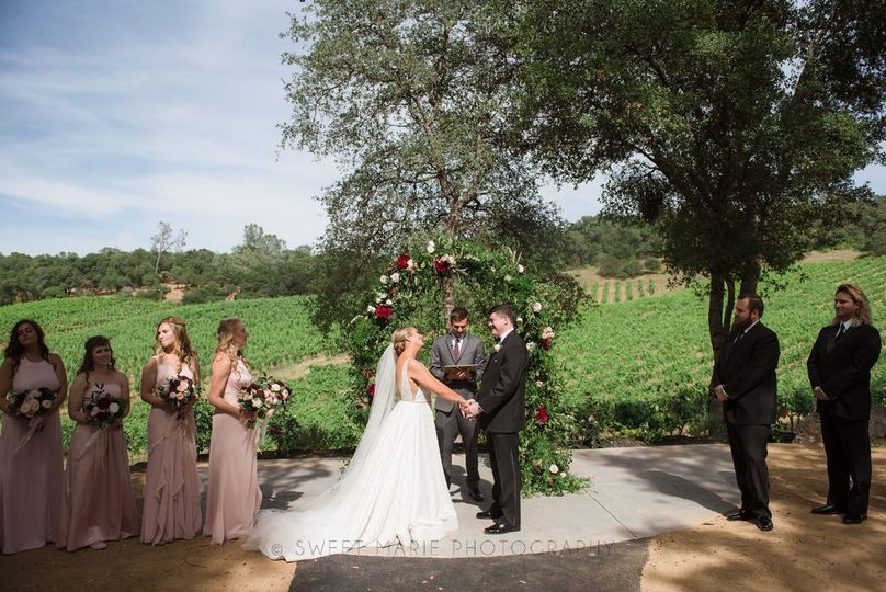 Vineyard backdrop for I Do