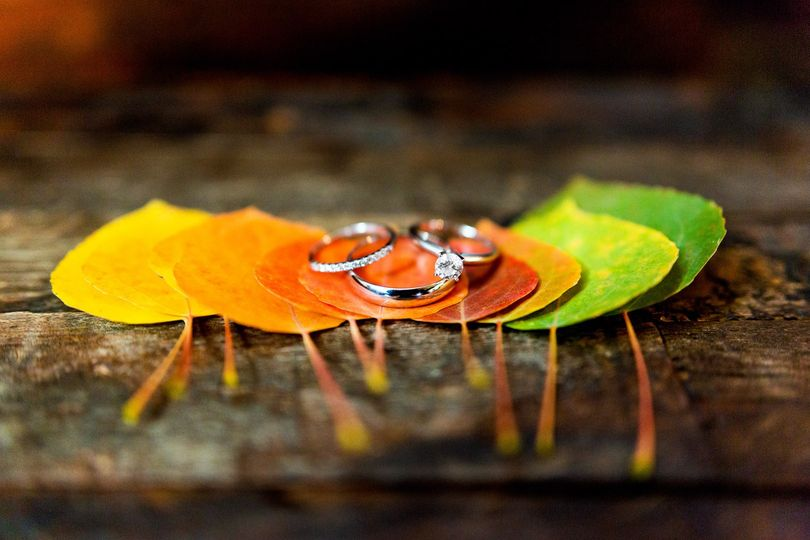 rocky mountain national park wedding rings on aspen leaves 51 619645 158620165683539