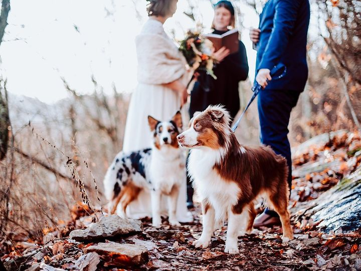 Tmx Marley And Michael4 51 1050745 158439648965423 Asheville, NC wedding officiant