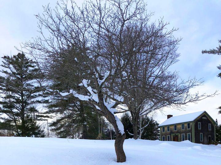 Tmx Vermont Wedding Retreat Winter2 51 1901745 157922862360798 East Wallingford, VT wedding venue