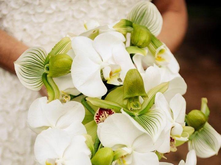 Tmx Embedded1549303684021 51 1012745 Lahaina, HI wedding planner