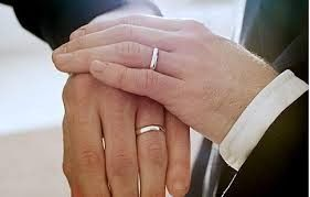 Tmx 1433905214061 Same Sex Wedding Rutland wedding officiant