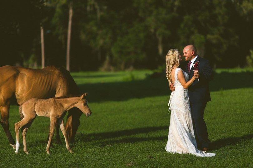 Newlyweds by the horses