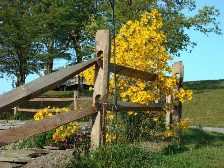 Scenic Farm Area