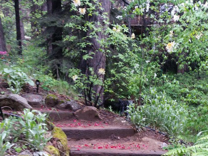 Tmx Jdw 51 986745 Yosemite National Park, CA wedding planner