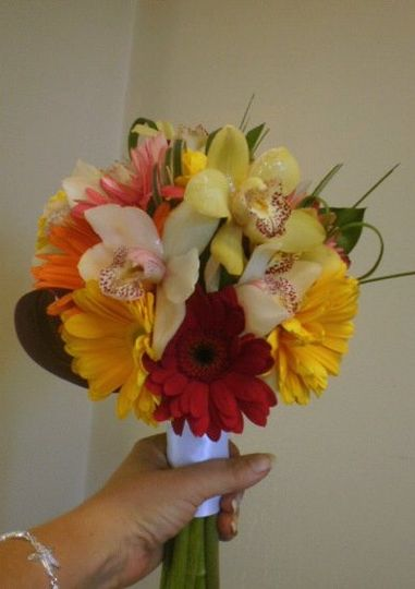 Tropical Colored Gerbera and SeaGrass mixed with Cymbidium Orchids In A Hand Held Stlye  Perfect For...