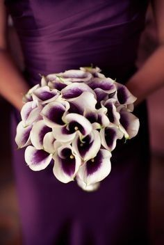 Tmx 1514989715538 Aee3f8e775d6458aebf4b881c5f8cc32 Newport Beach wedding florist