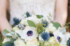 Appleblossom Flowers
