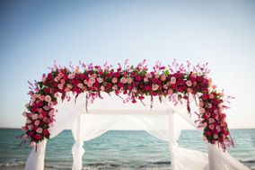 The Cabo Wedding Company