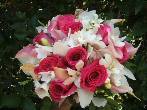 roses cymbidium orchids freesia calla lilies or