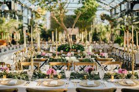 Alison & Bryan Destination Weddings