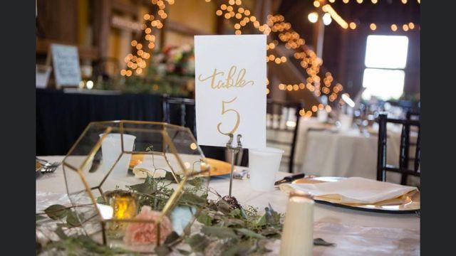 Tmx Img 0771 51 1961945 160255324212222 Victoria, MN wedding planner