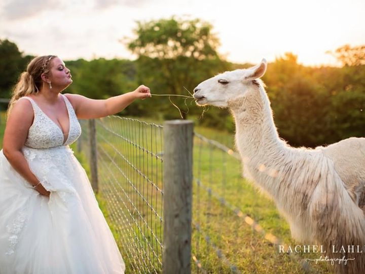 Tmx Laura And Wedding Llama 51 1961945 159819992588225 Victoria, MN wedding planner