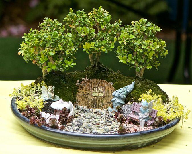 Miniature plant