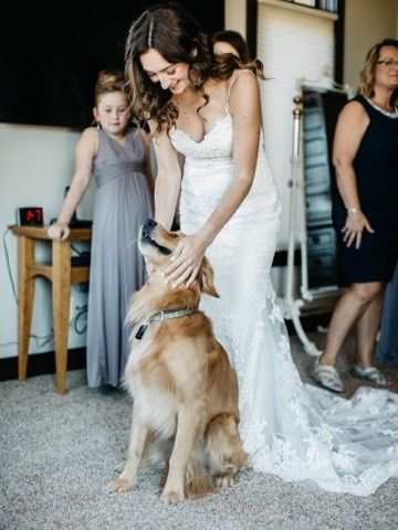 The bride playing with dog