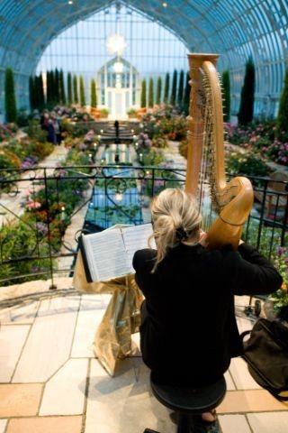 Tmx 1393009106956 Dorothypedersen36 Saint Paul wedding ceremonymusic