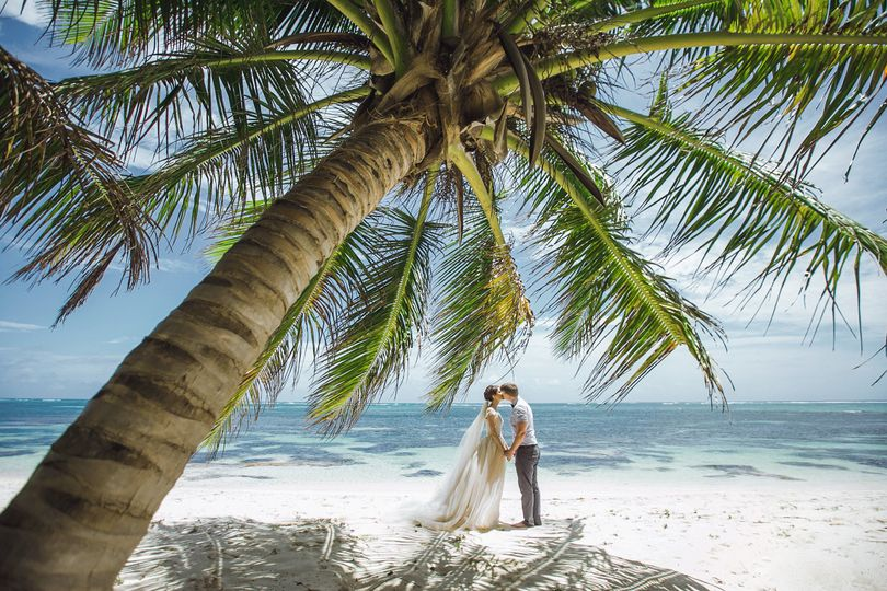 A kiss under the palm tree