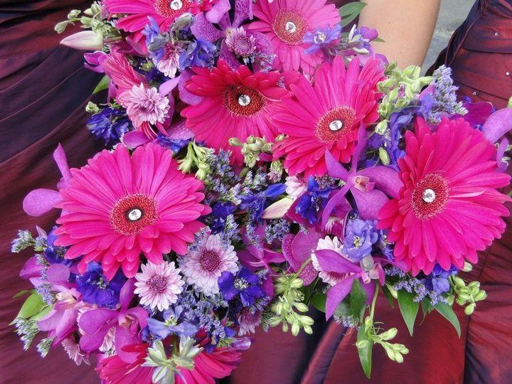 The Country Daisy Florist