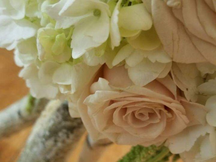 Tmx  Facebook 1546115629992 51 1007155 Deer Park, NY wedding florist