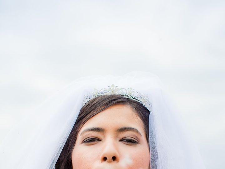 Tmx 1343788731254 DiscuaLuckhardt2012050400562 Novi, MI wedding planner