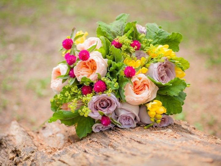 Tmx 1378321062787 Campingstylewedding 20120826 00008 Novi, MI wedding planner