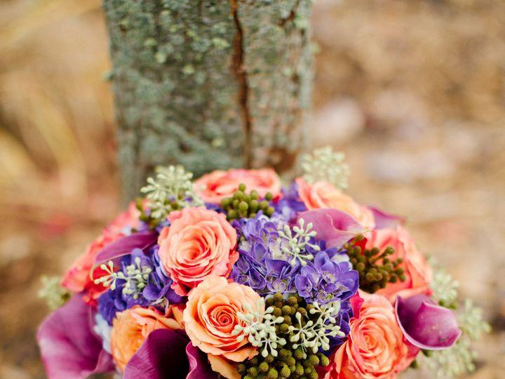 Tmx 1379641812330 495 Novi, MI wedding planner