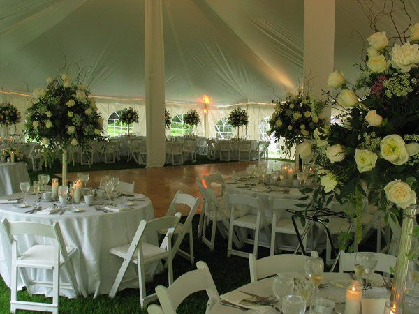 Tmx 1299782059683 Bellimodance Danbury, CT wedding rental
