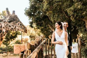 Hilary Hamer Weddings and Events