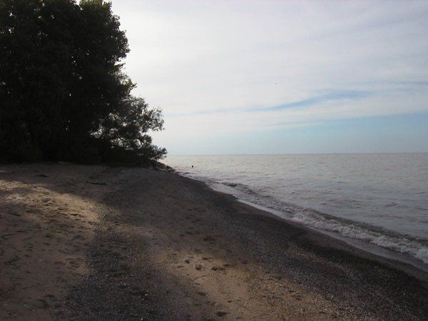 Beach at Crane Creek State Park