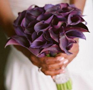 Deep purple miniature calla lilies in a structured bouquet design.