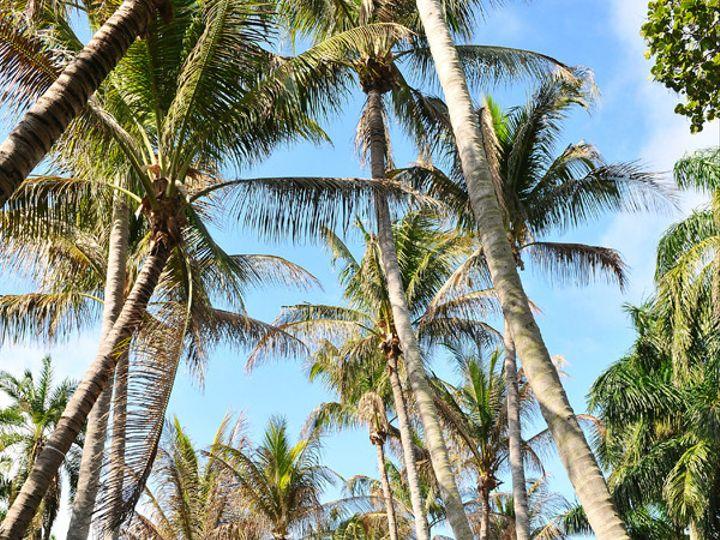 Tmx 1376584583781 Aleesmall Fort Lauderdale, FL wedding venue