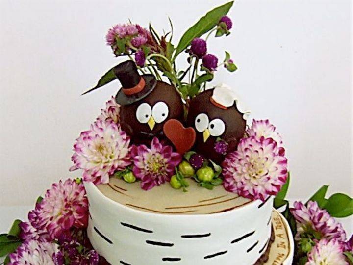 Tmx 1340814775091 Dhaliaowls2a Hopedale wedding cake