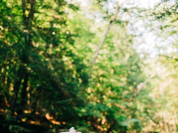 Tmx Ricketts Glen Waterfall Pennsylvania Sullivan Falls Elopement 8750 51 944455 159758399341643 Northumberland, PA wedding planner