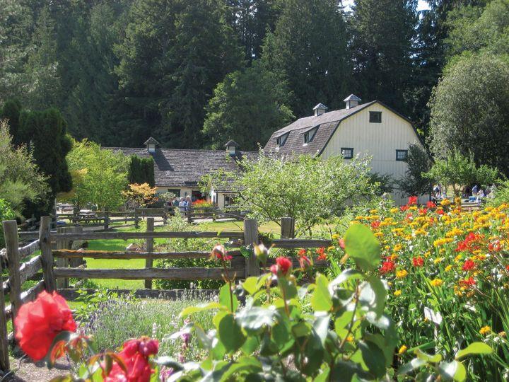 Trillium woods farm