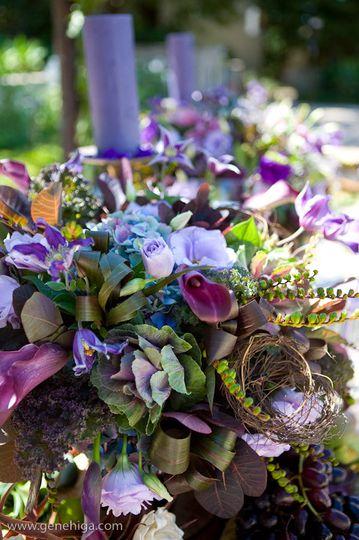 Provence courtesy of Gene Higa Photography