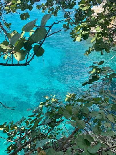 Blue Waters of the Caribbean