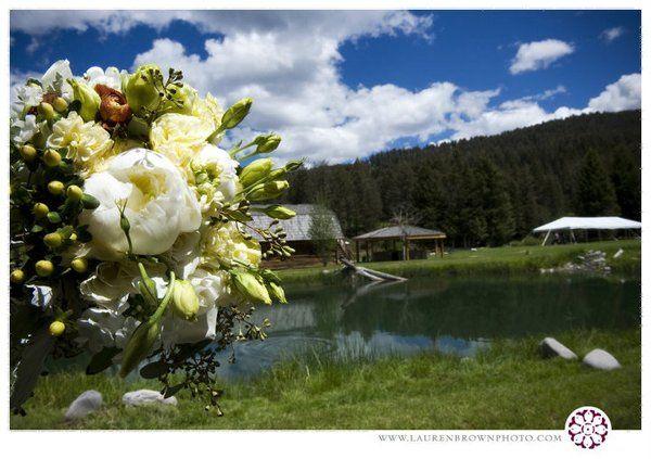 Tmx 1285777040807 380044156177843344359402433447546387456099n Bozeman wedding florist