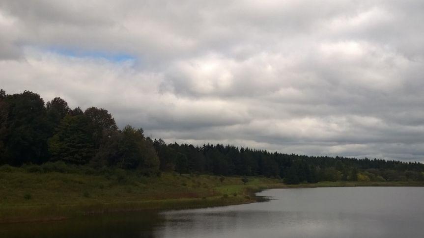 woods at bear creek 1