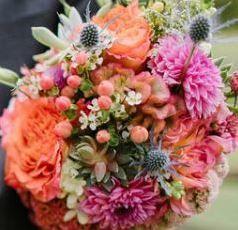 Tmx 1519743660 C9dc641fbce53fe5 1519743659 C478ee79d62aa3a2 1519743876107 6 Gibson Snip Washington Boro, PA wedding florist
