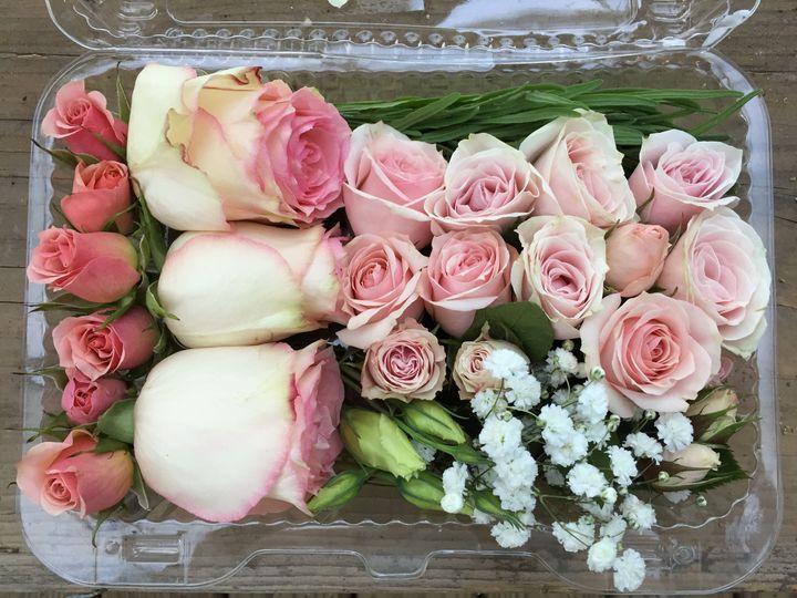 Tmx 1519743703 B512ea734b4a0486 1519743701 91da4f72b63bd0a9 1519743891561 7 IMG 2906 Washington Boro, PA wedding florist