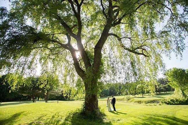 Tmx 1488147741605 June 4 2016 Willow Tree Stow wedding venue