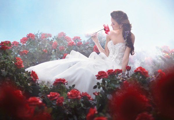 Disney Bridal Princess Collection II by Alfred Angelo | Belle