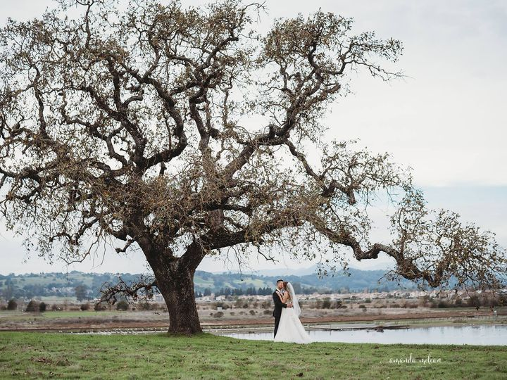 Tmx 51486690 571134830036082 2254503044626513920 N 51 784655 Napa wedding photography