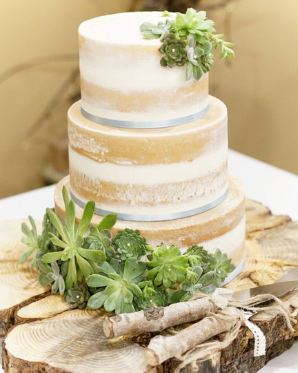 Three tier naked cake with succulents