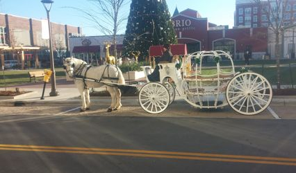 Willow Wind Carriage & Limousine Service