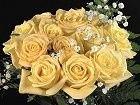Tmx 1377884664186 Yellow140 Far Rockaway, NY wedding favor