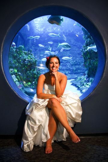 Bride by an aquarium
