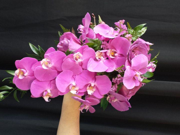Tmx 20160116 091351 51 1117855 159311186941306 Sarasota, FL wedding florist