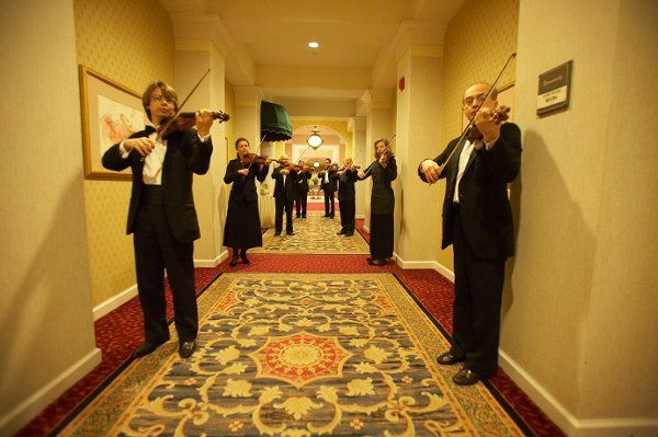 """Our """"Hallway of Strings"""" this will certainly make an impression on your guests..."""