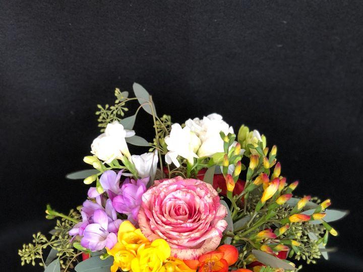 Tmx Img E10281 51 1307955 157412472860173 Epping, NH wedding florist